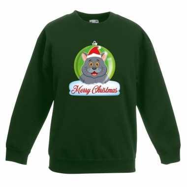 Foute kersttrui grijze kat / poes kerstbal groen jongens meisjes
