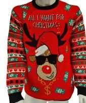 Foute kersttrui all i want is money lampjes