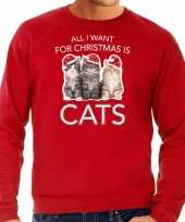 Foute rode kersttrui kerstkleding all i want for christmas is cats heren