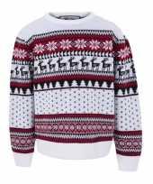 Foute witte kersttrui kinderen nordic print